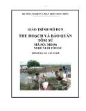Giáo trình Thu hoạch và bảo quản - MĐ06: Nuôi tôm sú