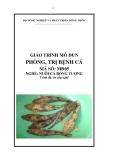 Giáo trình Phòng, trị bệnh cá - MĐ05: Nuôi cá bống tượng
