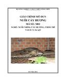 Giáo trình Nuôi cầy hương - MĐ02: Nuôi nhím, cầy hương, chim trĩ