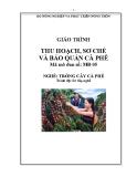 Giáo trình Thu hoạch, sơ chế và bảo quản cà phê - MĐ05: Trồng cà phê