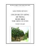 Giáo trình Chuẩn bị cây giống để trồng - MĐ01: Trồng cây có múi