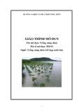 Giáo trình Trồng rừng đước - MĐ01: Trồng rừng đước kết hợp nuôi tôm