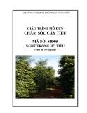 Giáo trình Chăm sóc cây tiêu - MĐ05: Trồng hồ tiêu