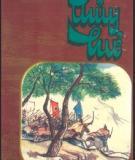 Ebook Thủy hử (Tập 2: Phần 2) - Thi Nại Am