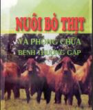 Kỹ thuật nuôi bò và phòng chữa bệnh thường gặp: Phần 1