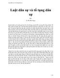 Luật dân sự và tố tụng dân sự - Lê Thị Bích Ngọc
