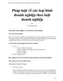 Pháp luật về các loại hình doanh nghiệp theo luật doanh nghiệp - Lê Thị Bích Ngọc