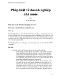 Pháp luật về doanh nghiệp nhà nước - Lê Thị Bích Ngọc