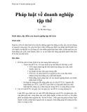 Pháp luật về doanh nghiệp tập thể - Lê Thị Bích Ngọc