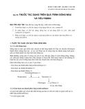 Dược lý học 2007 - Bài 30: Thuốc tác dụng trên quá trình đông máu và tiêu fibrin