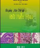 Bài giảng Atlas thực tập Giải phẫu bệnh (Phần 1) - ĐH Y khoa Phạm Ngọc Thạch