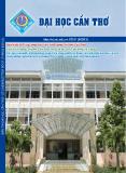 Bản tin Đại học Cần Thơ số 7 tháng 8 năm 2013