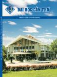 Bản tin Đại học Cần Thơ số 2 tháng 2 năm 2013