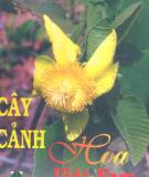 Cẩm nang Cây cảnh, hoa Việt Nam: Phần 1