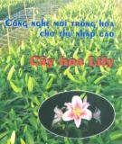 Ebook Công nghệ trồng hoa cho thu nhập cao: Tập 3 (Phần 1) - ThS. Đặng Văn Đông, PGS.TS. Đinh Thế Lộc