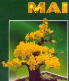 Phương pháp trồng hoa mai: Phần 2