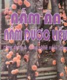 Ebook Nấm ăn - Nấm dược liệu Công dụng và công nghệ nuôi trồng: Phần 2 - PGS.PTS. Nguyễn Hữu Đống, KS. Đinh Xuân Linh