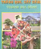 Kỹ thuật Trồng hoa trồng cây cảnh trong gia đình: Phần 2