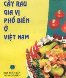 Một số cây rau gia vị phổ biến ở Việt Nam: Phần 1