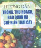 Kỹ thuật trồng, thu hoạch, bảo quản và chế biến trái cây: Phần 1