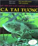 Kinh nghiệm gây giống và chăm sóc cá Tai Tượng: Phần 2