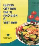 Tìm hiểu về cây rau gia vị phổ biến ở Việt Nam: Phần 1