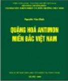 Miền Bắc Việt Nam - Quặng hóa antimon: Phần 2
