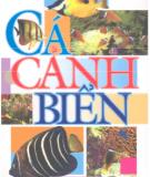 Ebook Cá cảnh biển: Phần 2 - Ngọc Lan