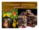 Cocoa fermentation general aspects