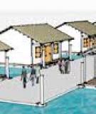 Đề tài: Thiết kế mô hình nhà nổi cho khu vực đồng bằng sông Cửu Long