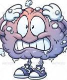 Sự liên hệ giữa cấu trúc bộ não & khả năng con người
