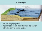Bài giảng Địa chất biển đại cương - Phần 5: Trầm tích biển sâu