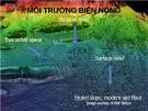 Bài giảng Địa chất biển đại cương - Phần 4: Môi trường biển nông