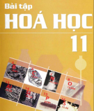 Hướng dẫn giải bài tập Hóa học 11: Phần 1