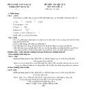 Đề kiểm tra học kì 2 môn Hóa lớp 11 - THPT Ngô Gia Tự