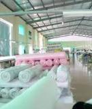 Tiếp cận chuỗi giá trị cho việc nâng cấp ngành dệt may Việt Nam - ĐH Đà Nẵng