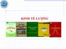 Bài giảng Kinh tế lượng: Chương 1 - Nguễn Văn Vũ An