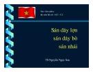 Bài giảng bộ môn Sốt rét - Kí sinh trùng và côn trùng: Sán dây lợn, sán dây bò, sán nhái - TS. Nguyễn Ngọc San (Học viện Quân y)