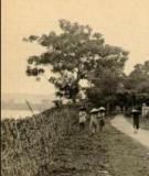 Chúa Nguyễn với công cuộc mở đất Đông Nam Bộ thế kỷ XVII - Đỗ Quỳnh Nga