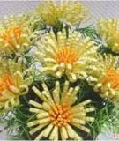 Cách làm hoa giọt tuyết bằng giấy handnade tuyệt đẹp