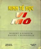 Ebook Kinh tế học vi mô: Phần 1 - Roberts S. Pindyck, Daniel L.Rubinfeld