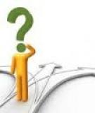 Đề cương môn học Lý thuyết và chính sách thương mại quốc tế - ĐH Mở bán công TP HCM
