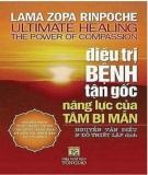 Ebook Điều trị tận gốc năng lực của tâm bi mẫn - Nguyễn Văn Điếu, Đỗ Thiết Lập (dịch)