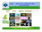 Bài giảng môn Độc học môi trường - Chương 7: Độc chất thuốc lá - TS. Trần Thị Thúy Nhàn