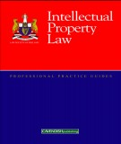 Ebook Intellectual Property Law: Part 1
