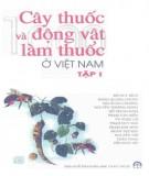 Cẩm nang Cây thuốc và động vật làm thuốc ở Việt Nam(Tập 1): Phần 1