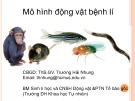 Bài giảng Mô hình động vật bệnh lí - ThS.GV. Trương Hải Nhung