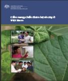 Cẩm nang chuẩn đoán bệnh cây ở Việt Nam