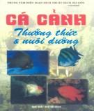 Kỹ thuật nuôi dưỡng Cá cảnh thưởng thức: Phần 1