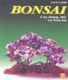 Nghệ thuật tạo dáng cây, thế và Non bộ - Bonsai : Phần 1